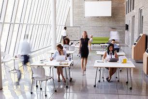 Les 9 types de collaborateurs en entreprise et comment les manager  - Cadreo | Formation professionnelle : réforme innovation actualité | Scoop.it