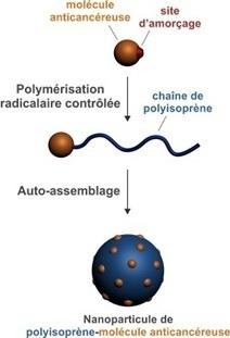 CNRS - Institut de chimie | Les promesses des nanotechnologies | Scoop.it