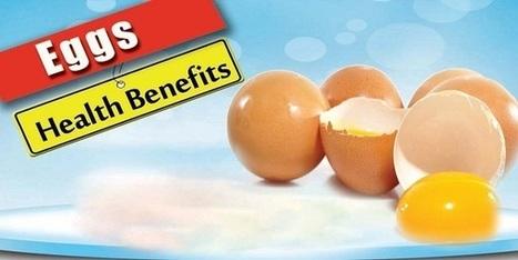 HEALTH BENEFITS OF EGGS | Recipes Zone | Scoop.it