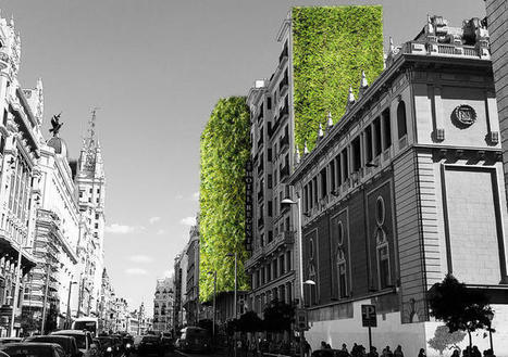 Madrid Is Covering Itself In Plants To Help Fight Rising Temperatures | Real Estate Plus+ Daily News | Scoop.it
