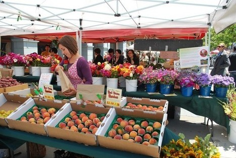 Why Cities Should Pay People To Eat Their Veggies | Giving Some Love to the City | Scoop.it