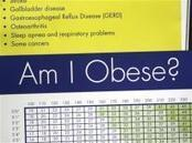 U.S. obesity leveling off, but at high rate: report   Longevity science   Scoop.it