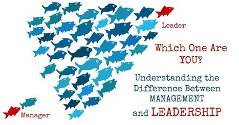 Understanding the Difference between Management and Leadership | Leadership and Learning | Scoop.it