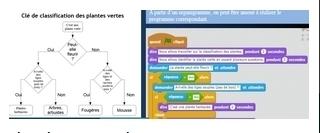 Ressource Informatique et programmation - éduscol STI | Technochauvinoise | Scoop.it