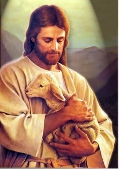 Do Religious Traditions Condone Animal Suffering? | Animals R Us | Scoop.it