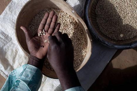 ONU - L'accord sur le financement du développement est crucial pour la prospérité mondiale, selon Ban Ki-moon | pour un monde durable | Scoop.it