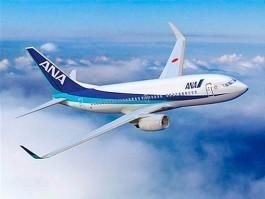 Japon: des vols réguliers vers Sendai autorisés | AirJournal.fr | Japon : séisme, tsunami & conséquences | Scoop.it