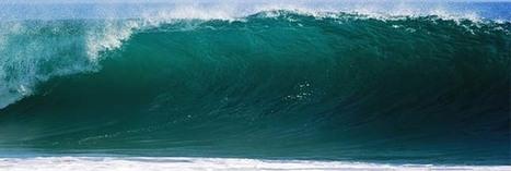 Les océans envahis par des bactéries tueuses ? | Toxique, soyons vigilant ! | Scoop.it