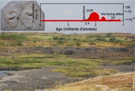L'effet « yoyo » de l'oxygène atmosphérique  il y a 2,3 à 2 milliards d'années, décisif pour la vie sur Terre | EntomoScience | Scoop.it