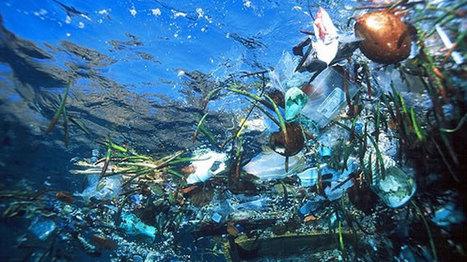 MH370: las islas de basura que se encontraron en el océano Índico | TN.com.ar | subida del nivel del mar | Scoop.it