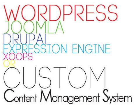 Custom CMS Development - Tronic Solutions | Web Development | Scoop.it
