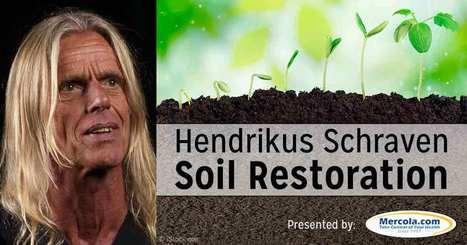 Soil Restoration Techniques   straw bale gardening   Scoop.it
