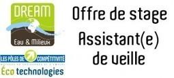 Offre de stage: Assistant(e) de veille | DREAM | Métiers de l'environnement | Scoop.it