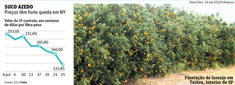 Suco de laranja despenca no mercado externo - 26/06/2013 | Agribusiness - Brasil | Scoop.it