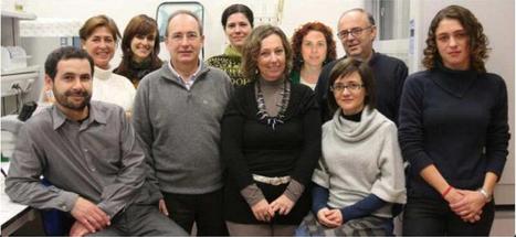 La ONCE y la Universidad de Alicante investigan contra la ceguera | Salud Visual 2.0 | Scoop.it