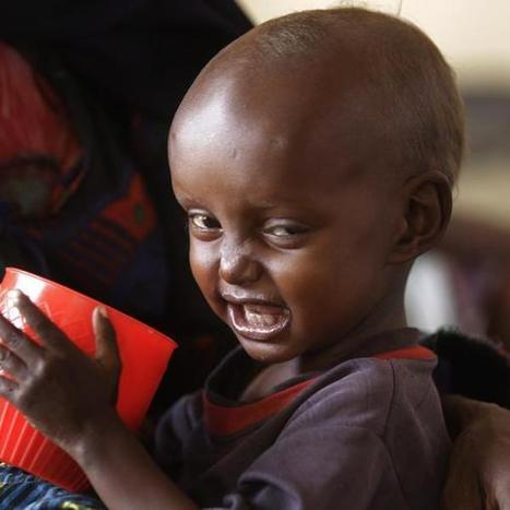 'World hunger is a scandal which still needs tackling': 100 charities and celebs back 'biggest coalition since Make Poverty History'   Poverty assingment_Wong Jia Ler   Scoop.it
