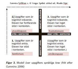 Hanna lär: Ett bedömningsmaterial för språkligt och digitalt arbete i varje skolämne behövs | Svenska som andraspråk | Scoop.it