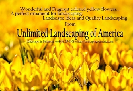 Quality Landscaping with Love of Nature | Landscape Ideas and Tips | Scoop.it