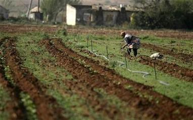 Could Africa Feed the World? | Poverty, Hunger & Malnutrition | Scoop.it