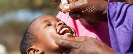 The entire African continent has been declared free of 'wild' polio cases | Virology News | Scoop.it