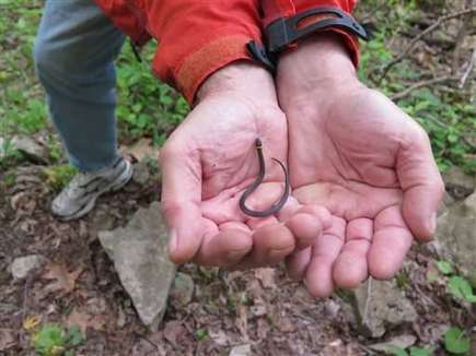 Snake lovers hit southern Illinois for annual migrations   GarryRogers Biosphere News   Scoop.it