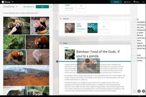 What Microsoft's Sway says about the future of Office | ZDNet | Edtech PK-12 | Scoop.it