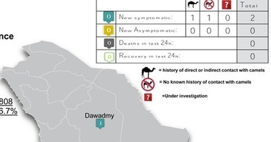 Avian Flu Diary: Saudi MOH Announces 2 Primary MERS Cases | MERS-CoV | Scoop.it