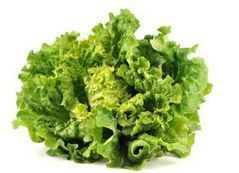 Des perturbateurs endocriniens dans deux salades sur trois   Sécurité sanitaire des aliments   Scoop.it