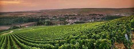 #Chablis Can Have Its Cake and Eat It Too | Vitabella Wine Daily Gossip | Scoop.it