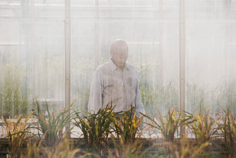 Inside Monsanto, America's Third-Most-Hated Company | Sustain Our Earth | Scoop.it