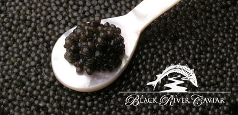 Caviar And Its Varieties | Buy Caviar | Scoop.it