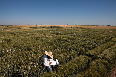 Agriculture and Climate Change, Revisited | The Great Transition | Scoop.it