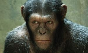 """Director Leaves """"Apes"""" Sequel — Slice of SciFi 