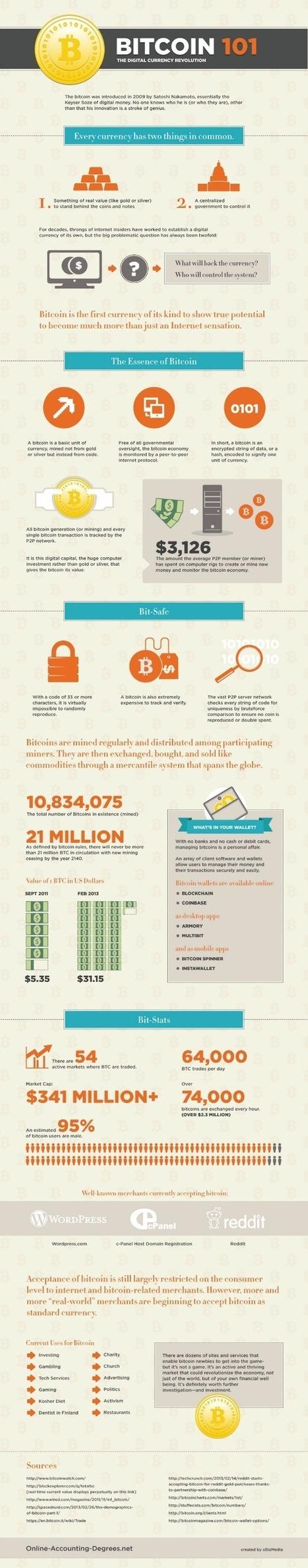 Bitcoin 101 [infographic]   The Best Infographics   Scoop.it
