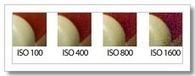 Sensibilidad ISO: Cuando Apertura y Velocidad no son Suficientes | exposició | Scoop.it