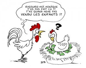Les poules et les oeufs d'abord | Toxique, soyons vigilant ! | Scoop.it