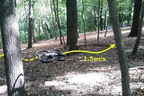 Drone learns from humans how to navigate a forest - DIY Drones | Rise of the Drones | Scoop.it
