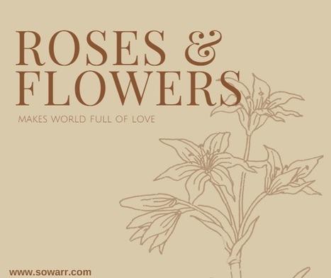 Roses quotes | Free Arabic Quotes | Scoop.it