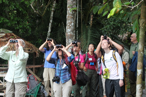 Educators Take BirdsEye to the Amazon | Rainforest EXPLORER:  News & Notes | Scoop.it