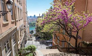 Programme Pinel ancien – montée des Carmélites | Programme immobilier Lyon | Scoop.it
