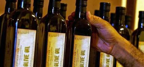 Olive oil could help to reverse heart failure, scientists claim | Politically Incorrect | Scoop.it
