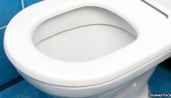 Research Shows Toilet Seat Cleaner then Chopping Board! | THISDAY (Nigeria) | CALS in the News | Scoop.it