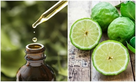 15 Reasons Bergamot Essential Oil Should Be In Every Home | Organic Farming | Scoop.it