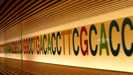 Genetic Connections Among Human Traits | The Scientist Magazine® | Longevity science | Scoop.it