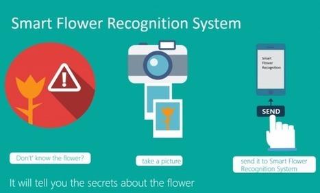 Microsoft invente le Shazam des plantes | geeko | L'e-Space Multimédia | Scoop.it