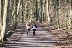 £1.3 million research into Sheffield parks aims to boost green space nationally | NERC media coverage | Scoop.it