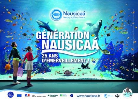 Nausicaá : 25 ans, ça se fête ! - Région Hauts-de-France | Tourisme en Nord-Pas de Calais | Scoop.it