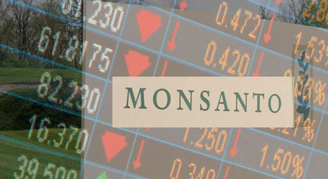 #Monsanto firing 1,000 more employees as global anti- #GMO movement takes toll on the most #evil corporation in the world | Messenger for mother Earth | Scoop.it