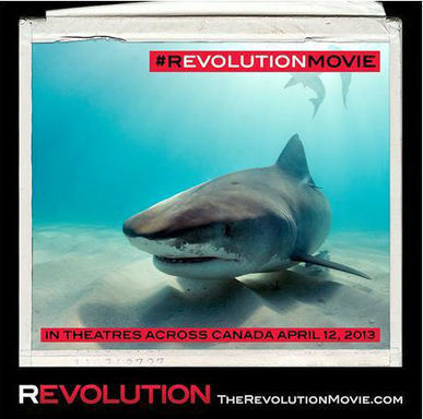 The Revolution Movie | By filmmaker and eco-warrior, Rob Stewart l WWF-Canada Blog | Documentary Landscapes | Scoop.it