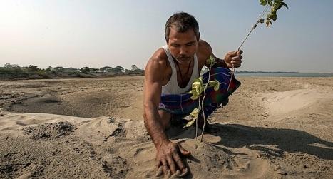 Un homme a planté une forêt de plus de 550 hectares en 30 ans. | Des 4 coins du monde | Scoop.it